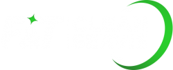 logo-servis-profesionalnog-ciscenja-F&T---za-plave